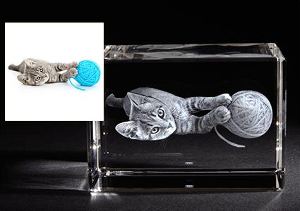 3D Laser Foto mit Katze LOOXIS GmbH