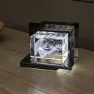 Opera Beleuchtungselement Adagio für den Giga im Querformat - Das 3D Laser Foto im Giga Viamant Glas ist nicht im Lieferumfang enthalten
