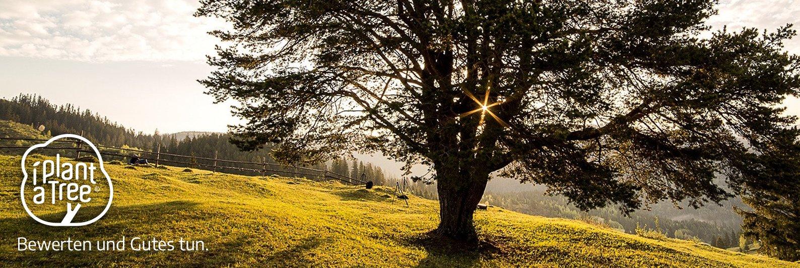 """LOOXIS pflanzt Bäume mit """"I Plant A Tree"""""""