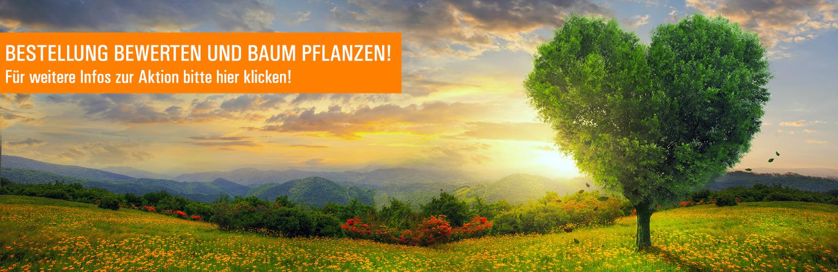 """Für jede 3. Bewertung pflanzt LOOXIS Bäume über Non-Profit-Organisation """"I Plant A Tree"""""""
